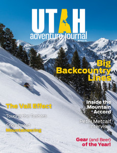 UAJ_Cover-Winter15