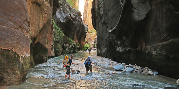 zionnarrows
