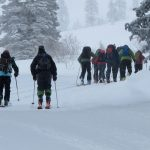 Grizzly Gulch- Keystone of the Wasatch