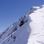 Ski Touring-off the Beaten (skin) track