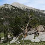 Crossing the Line- A Deep Creek (Mis)Adventure