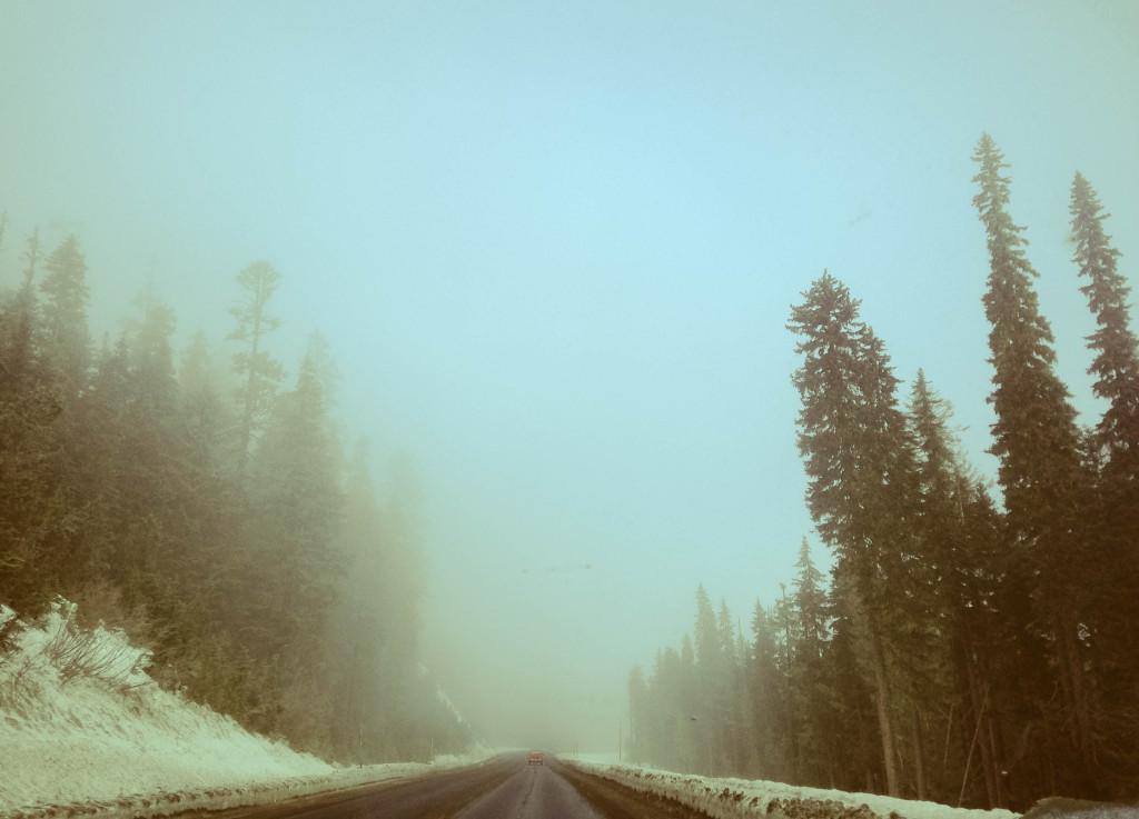 Mt Hood drive