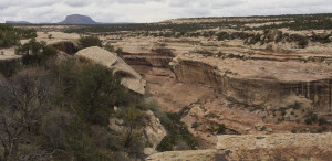 Top of Toadie Canyon