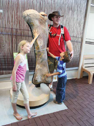A European family visiting Utah compare themselves to this large dinosaur leg bone at Dinosaur National Monument.