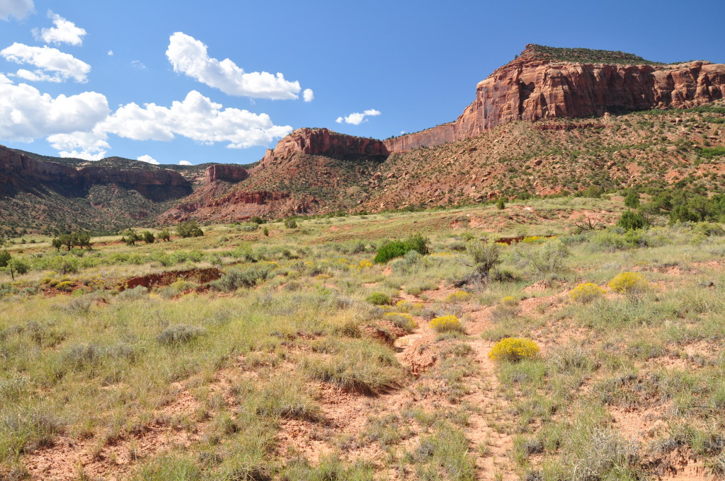 A disputed roadway in the proposed Bear's Ears National Monument